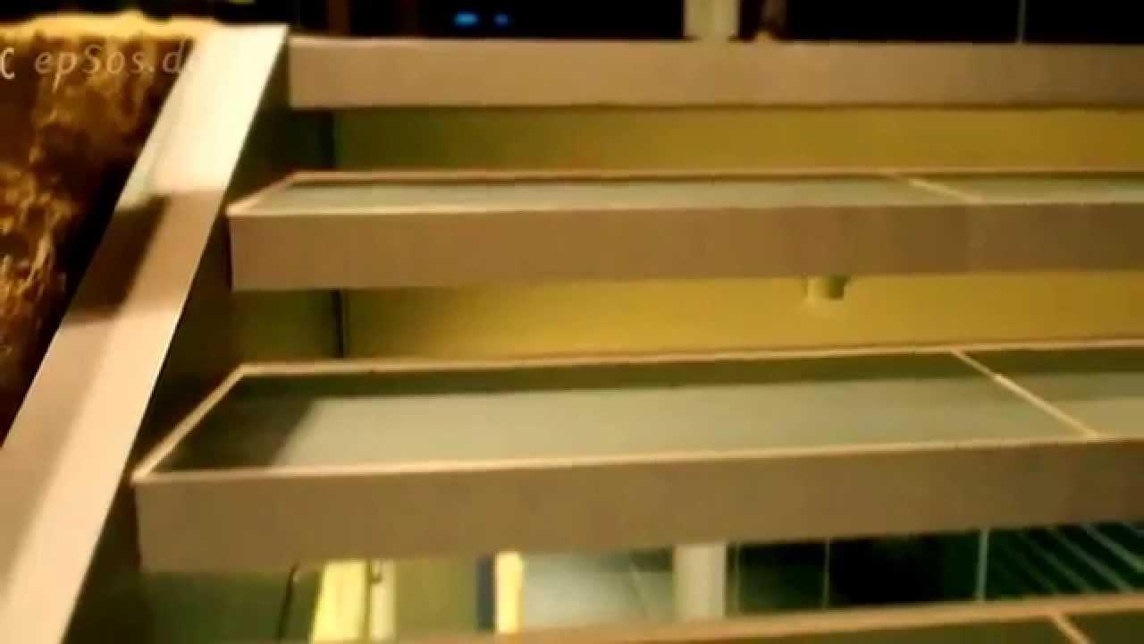 מדרגות עץ חיצוניות